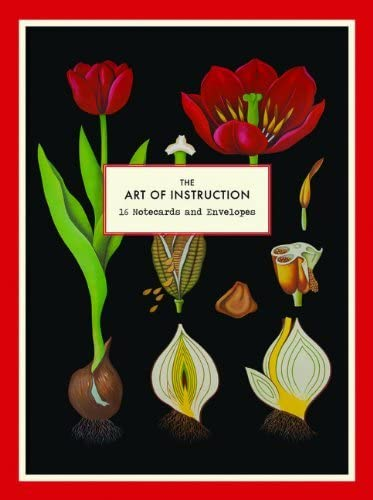 Art of Instruction Floral Chart Notecards