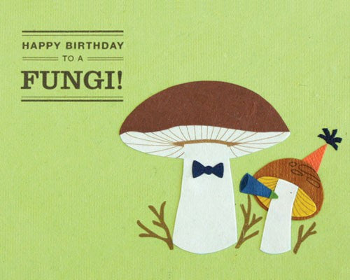 Happy Birthday to a Fungi Card by Good Paper at local Fairmount shop Ali's Wagon in Philadelphia, Pennsylvania