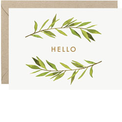 Hello Springs Boxed Cards