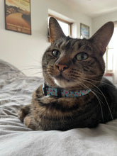 Load image into Gallery viewer, Philly Pet Collars