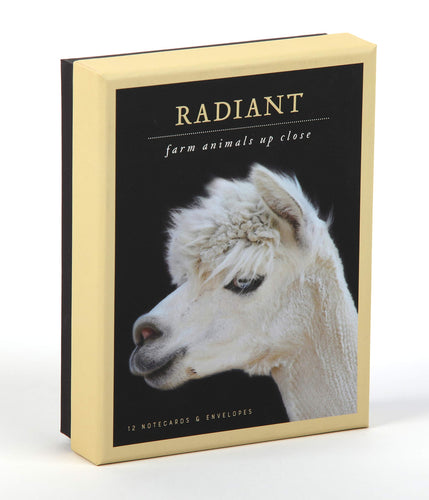 Radiant Farm Animals Notecards