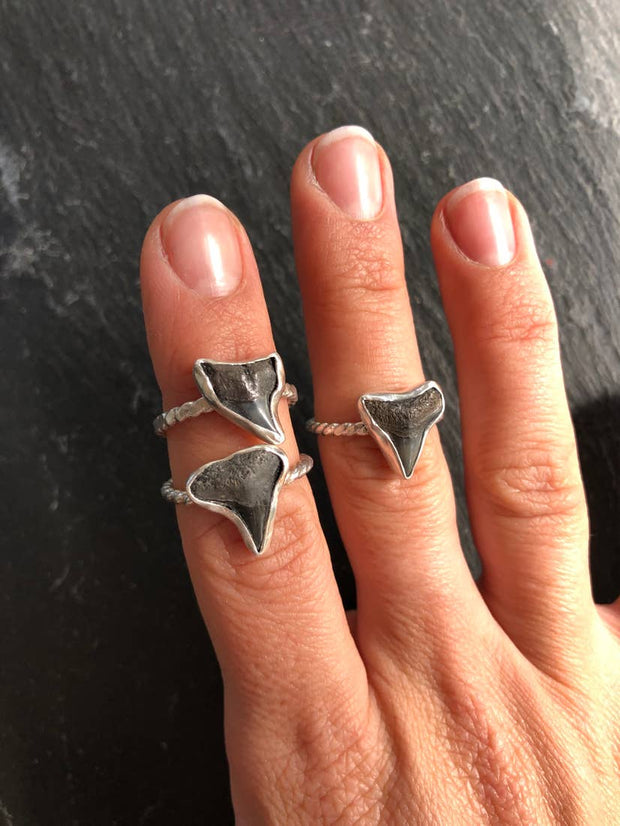 Genuine Fossilized Amelia Island Shark Tooth Ring