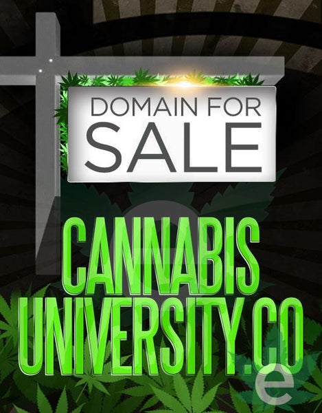 CANNABISUNIVERSITY.CO