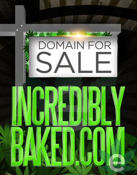 INDIANAPOLISDISPENSARIES.COM , Domains & Websites - eCann, Inc., eCannabis Shop  - 2
