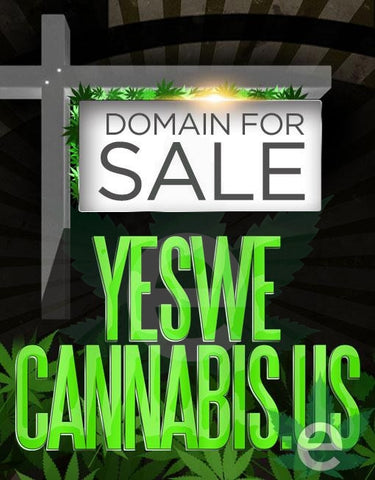 YESWECANNABIS.US , Domains & Websites - eCann, Inc., eCannabis Shop