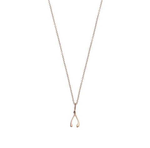 the little wishbone necklace