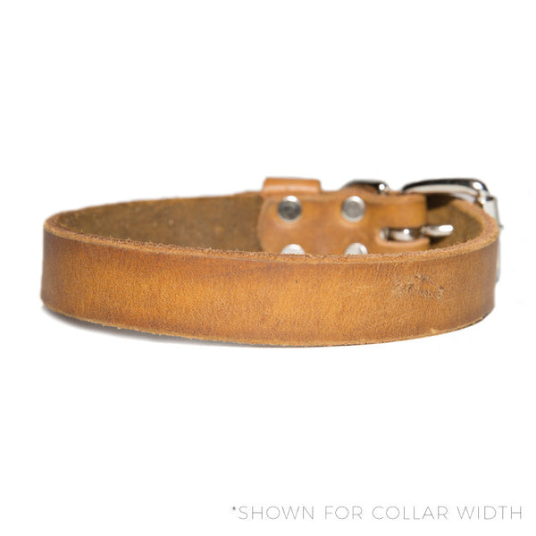 "HC Signature - 3/4"" Straight Collars"
