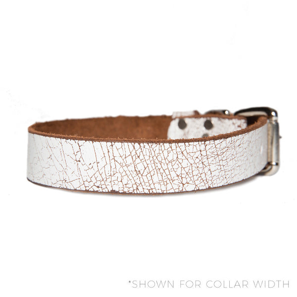 "HC Signature - 1"" Straight Collars"