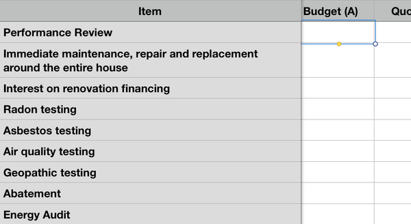 Renovation Budget Workbook (Microsoft Excel format)