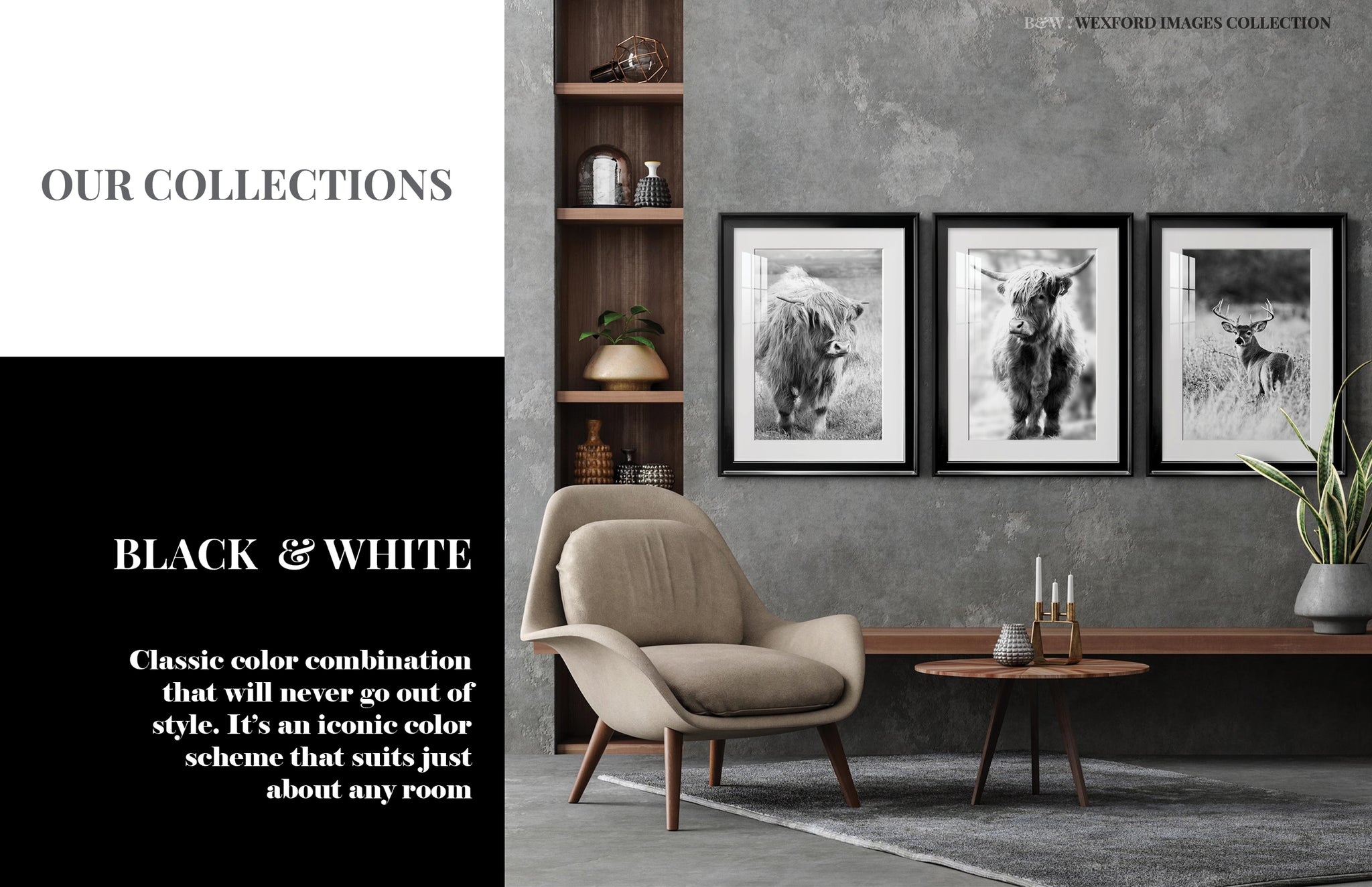 Collections BW 1