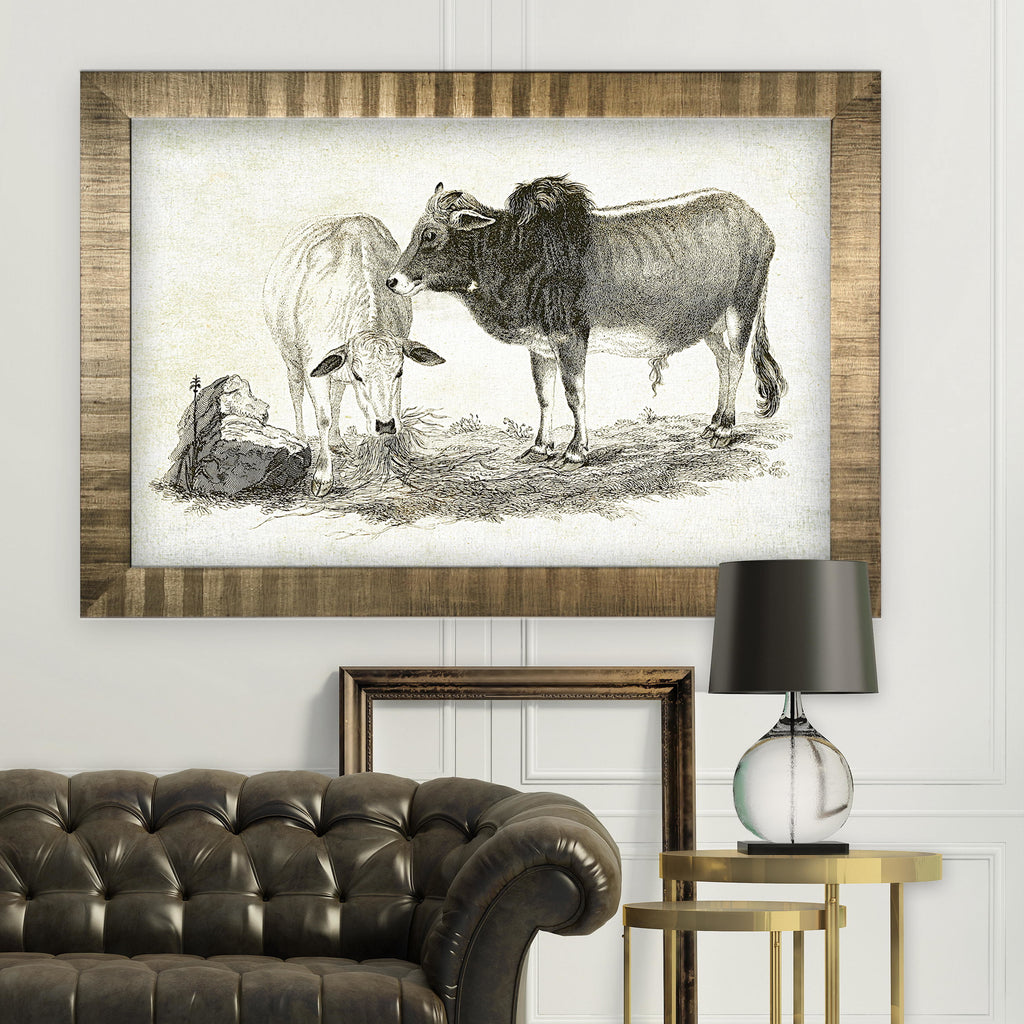 Cattle Sketch VI -Antique Gold Frame