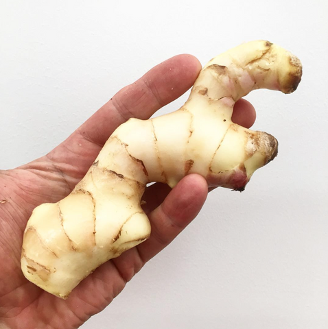 Ginger  ... FIRE TONIC ® ingredient #5