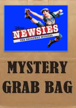 Newsies Grab Bag ($25 Value) - Broadway Bazaar