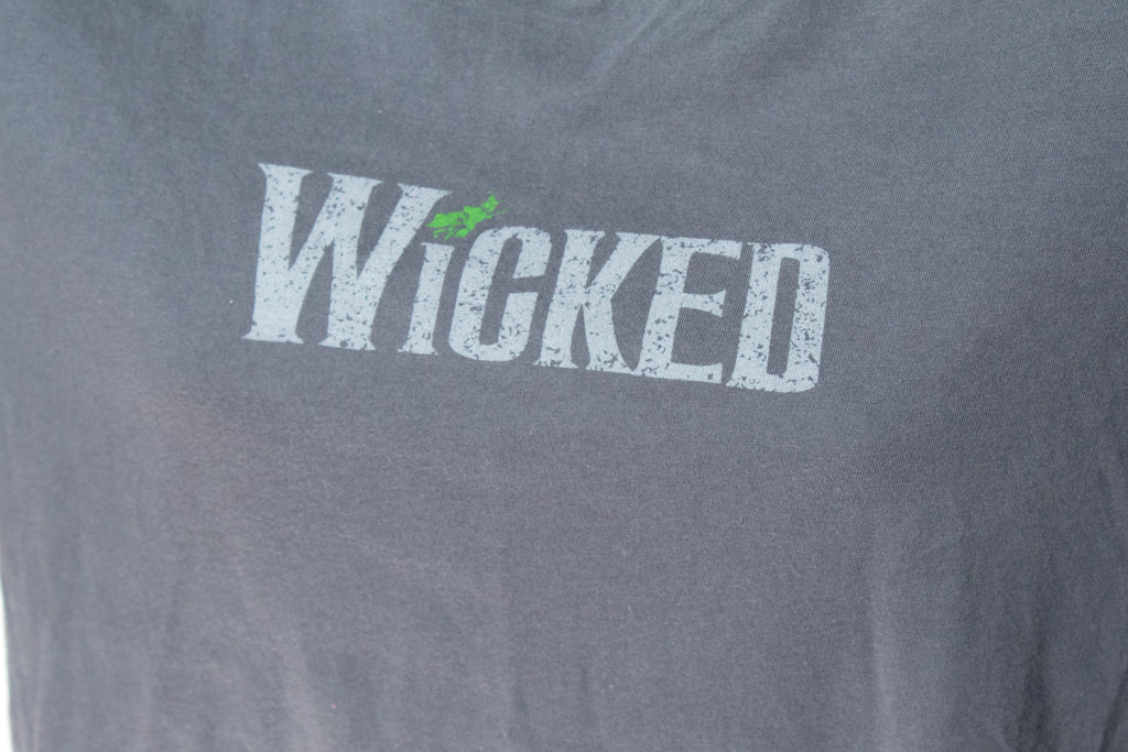 Wicked 2005 Defy Gravity Tour Tshirt