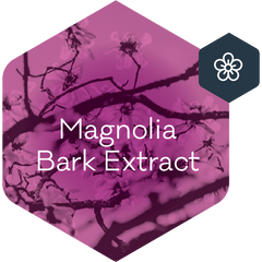Magnolia Bark Extract_active Ingredient