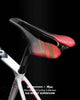EdWonder X Selle Italia | SLR Boost [Limited Edition]