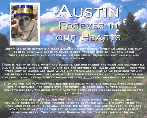 Memorial Gifts, Rainbow Bridge Pet Memorials. Dog Memorial, Cat Memorial, Personalized Memorial Gifts 8 x 10 Print