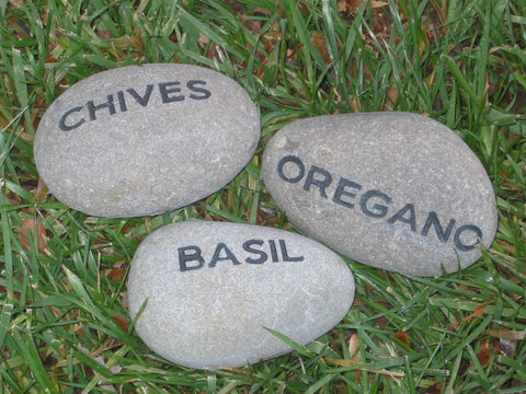 Personalized Set of 3 Stones Herb Garden Stone 2-3 Inch Garden Stone Markers