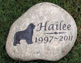 Newfoundland Pet Memorial Stone, Newfie, Tombstone, Headstone 8-9 Inch