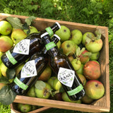 Cranes Cider Premium Apple Cider (9x500ML)