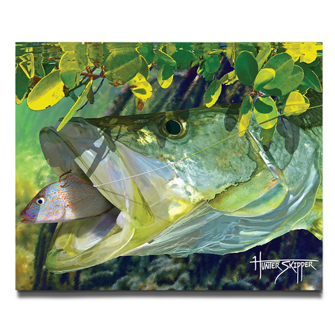 The Florida Snook Canvas Print