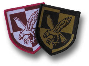 16 AIR ASSAULT DZ BADGE - Silvermans  - 2