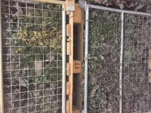 USED 6'x6' ARMY CAMMO NET