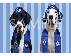 Great Danes Mantle and Harlequin on blue and white Hanukkah Greeting Card (Abbott and Costello)