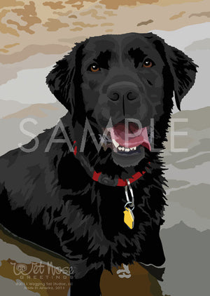 Labrador Retriever Black
