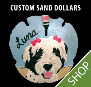 Custom Painted Sand Dollar