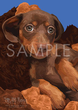 Dachshund Black and Tan