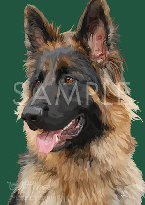 German Shepherd Long Haired