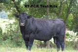 RT- PCR Bovine test Kits