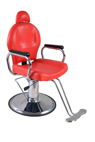 Euro Hydraulic Styling Chair The Salon Product Store
