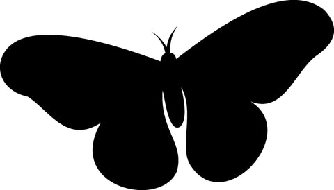 Butterfly Insect Wall Decal Sticker 104