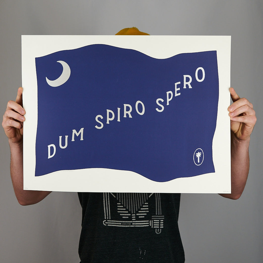 Travel by Screen - Dum Spiro Spero