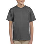 Hanes Youth EcoSmart Short Sleeve Crewneck T-Shirt - Smoke Grey