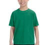 Comfort Colors Youth Short Sleeve Crewneck T-Shirt - Grass Green