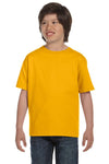 Gildan G800B Youth DryBlend Moisture Wicking Short Sleeve Crewneck T-Shirt Gold Front