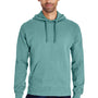 ComfortWash by Hanes Mens Hooded Sweatshirt Hoodie - Spanish Moss Green