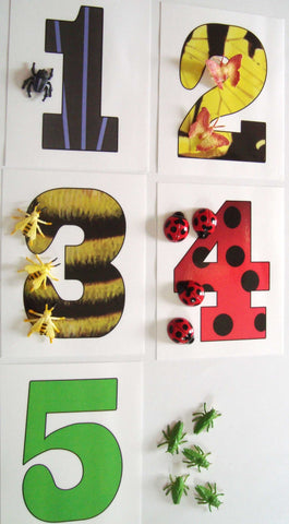 Insect Counting - M&M Montessori Materials