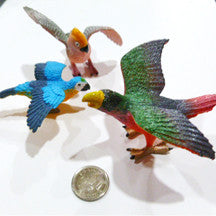 Macaw - M&M Montessori Materials