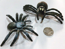 Tarantula - M&M Montessori Materials