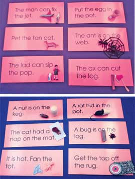 Pink Sentences & Objects Set - M&M Montessori Materials