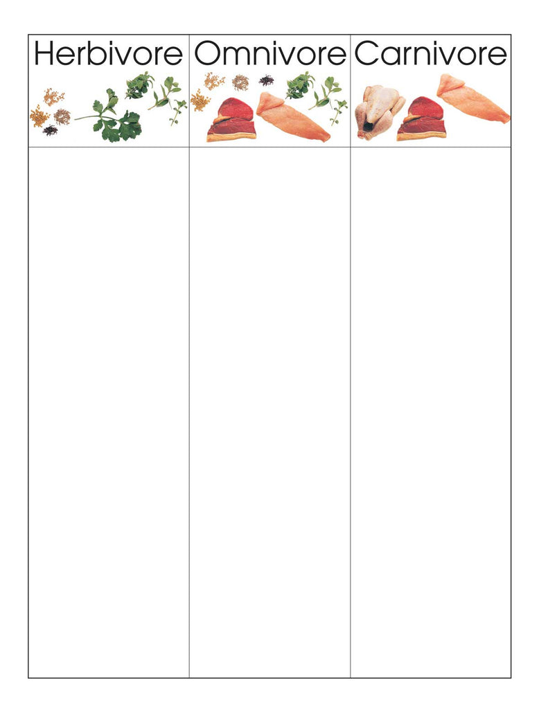 HerbivoresOmnivoresCarnivores Montessori Materials by Lakeview – Herbivore Carnivore Omnivore Worksheet