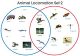 Animal Locomotion Set - M&M Montessori Materials  - 2