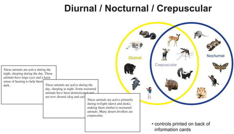 Diurnal/Nocturnal/Crepuscular - M&M Montessori Materials