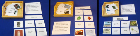 Synonyms, Antonyms, Homonyms - M&M Montessori Materials