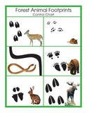 Animal Prints Cards - M&M Montessori Materials  - 3