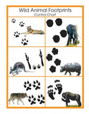 Animal Prints Cards - M&M Montessori Materials  - 4